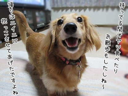 kinako6339.jpg