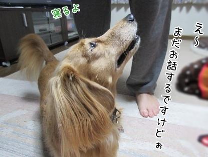 kinako6340.jpg