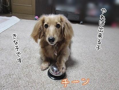 kinako6348.jpg