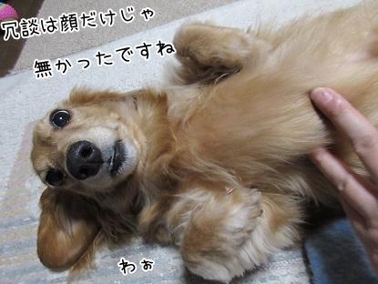 kinako6362.jpg