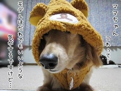 kinako6396.jpg
