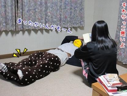 kinako6420.jpg