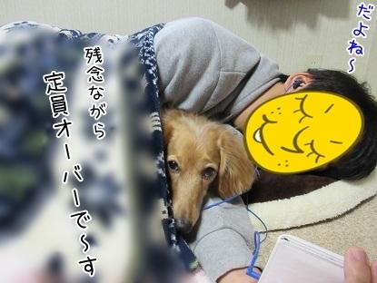 kinako6423.jpg