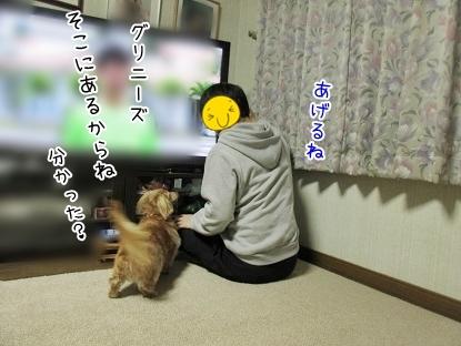 kinako6426.jpg