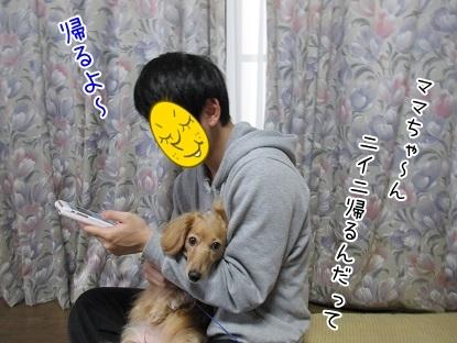 kinako6431.jpg