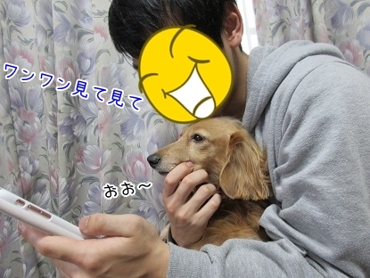 kinako6432.jpg