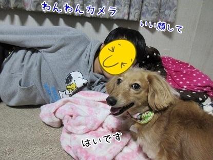 kinako6433.jpg