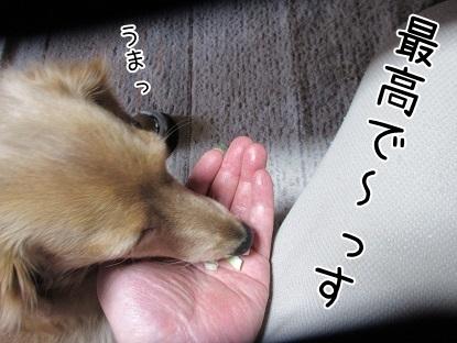 kinako6442.jpg