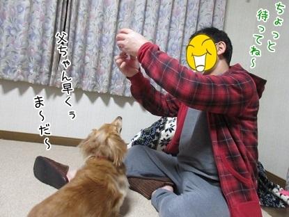kinako6492.jpg