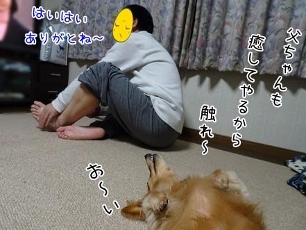kinako6617.jpg