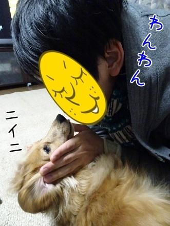 kinako6631.jpg