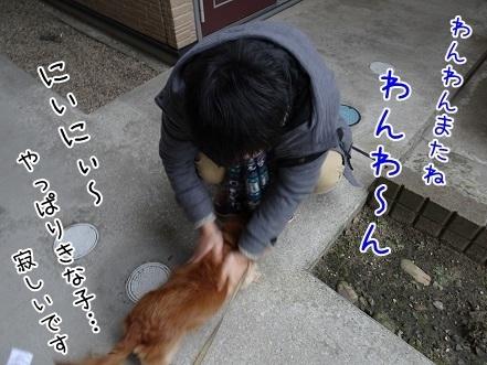 kinako6635.jpg
