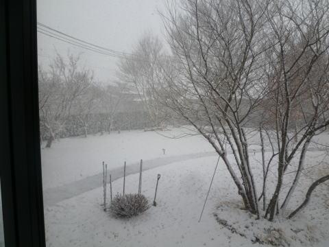 雪の日は(1)