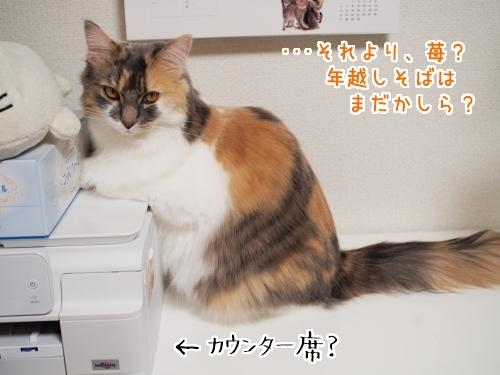 PA070213_1.jpg