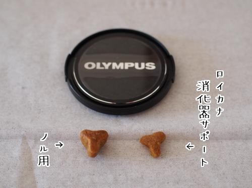 PA150033_1.jpg