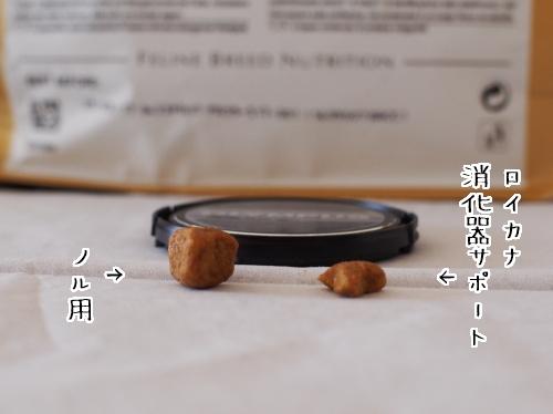 PA150038_1.jpg