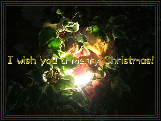 161224 Merry Christmas-1