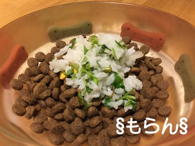 170107 七草粥-3