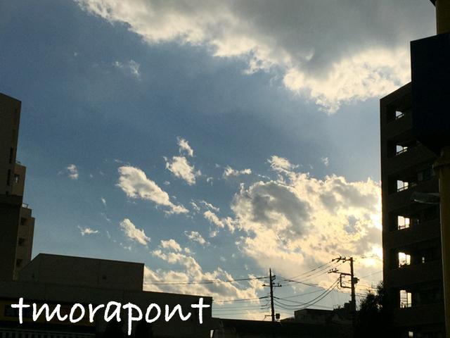 170113 雲を見ながら昼散歩-4