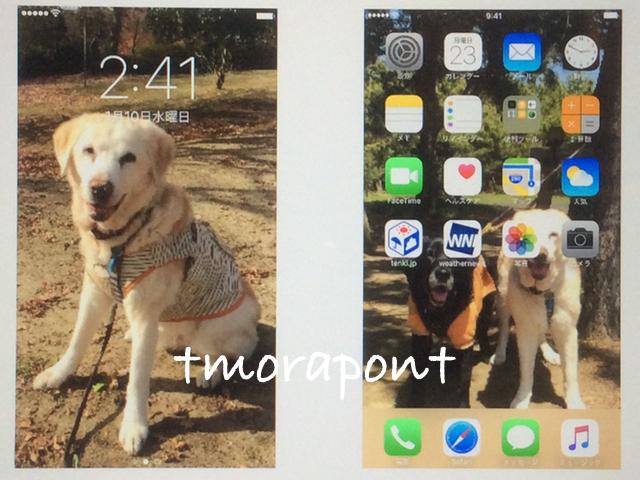 170123 iPhone7 plus-3