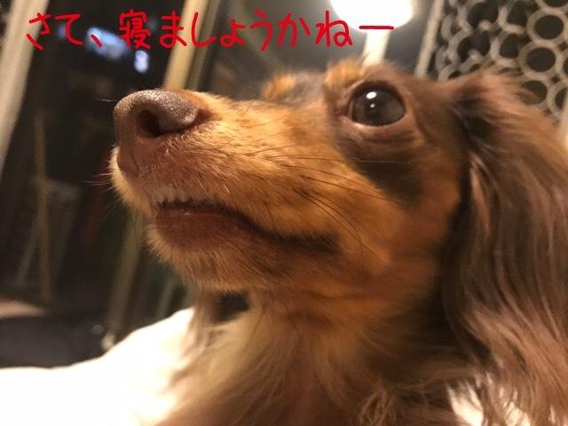 20161122184020701.jpg