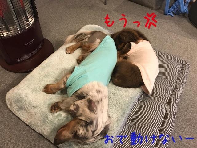 2017012711394893e.jpg