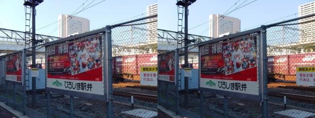 マツダスタジアム カープロード 黒田パネル(交差法)
