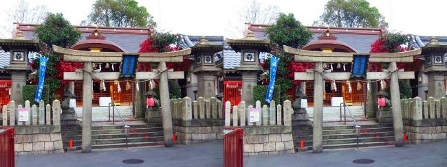 若宮八幡大神宮①(平行法)