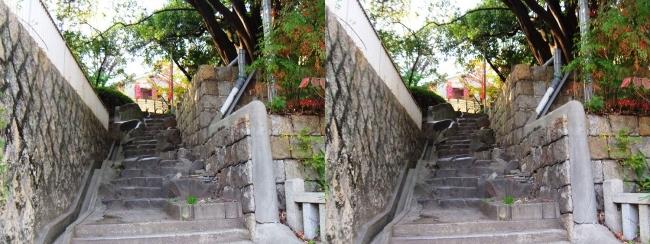 三光神社⑧(交差法)