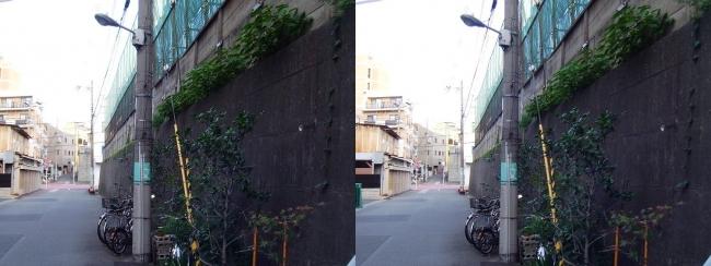 天王寺区空堀町(平行法)