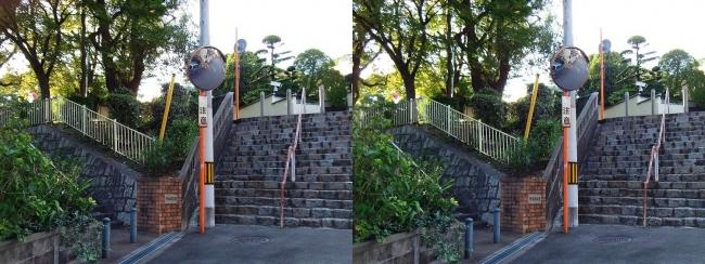 清水谷公園(平行法)
