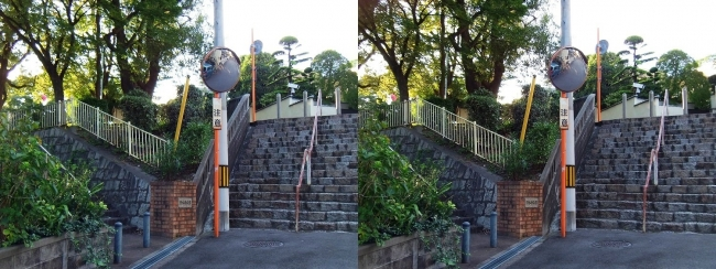 清水谷公園(交差法)
