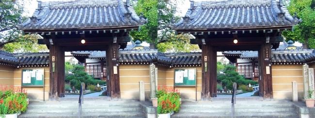 興徳寺①(交差法)