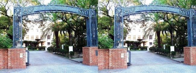 大阪女学院大学(平行法)
