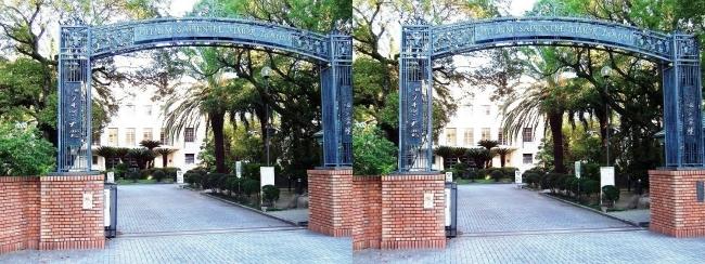 大阪女学院大学(交差法)