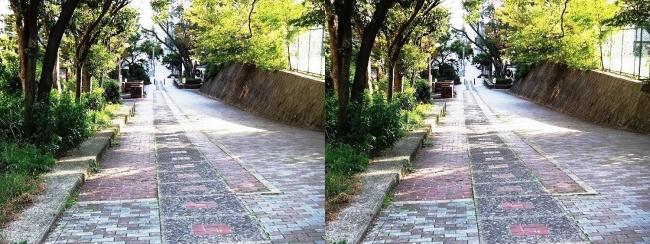 歴史の散歩道 森之宮勝山線①(交差法)