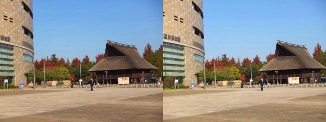 大阪歴史博物館(平行法)