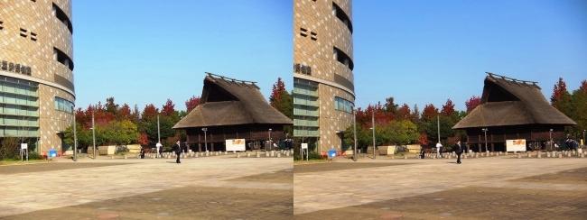 大阪歴史博物館(交差法)