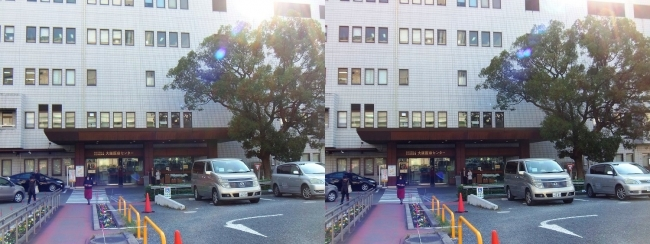 国立病院機構 大阪医療センター(交差法)