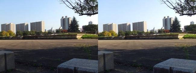 難波宮跡公園①(平行法)
