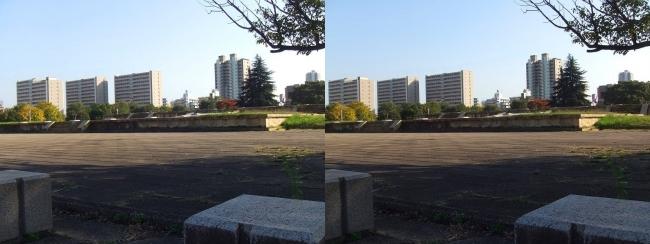 難波宮跡公園①(交差法)