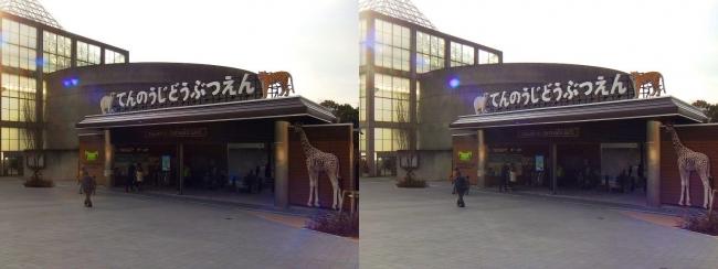 天王寺動物園(平行法)