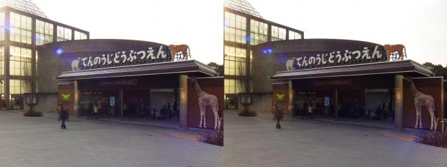 天王寺動物園(交差法)