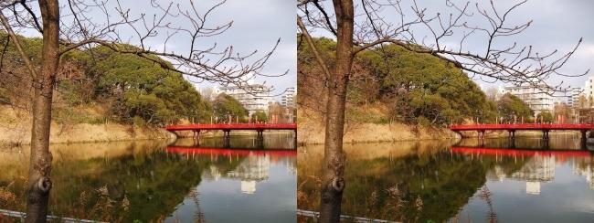 天王寺公園 茶臼山 和気橋③(交差法)