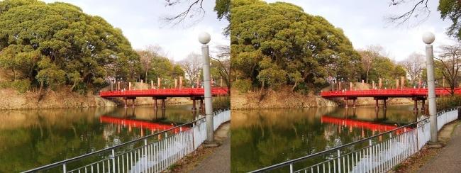 天王寺公園 茶臼山 和気橋②(交差法)