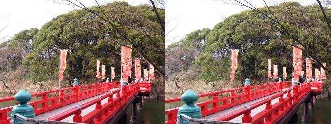 天王寺公園 茶臼山 和気橋①(平行法)