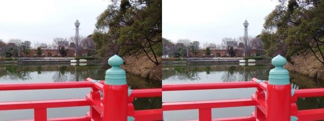 天王寺公園 和気橋からの通天閣(平行法)