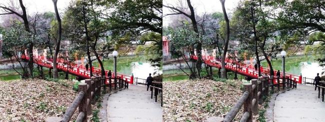 天王寺公園 茶臼山からの和気橋(平行法)