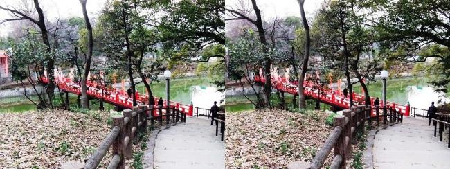天王寺公園 茶臼山からの和気橋(交差法)