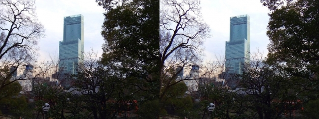 天王寺公園 茶臼山からのあべのハルカス(平行法)